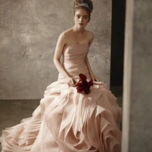 Vera Wang Bridal Blush Gown